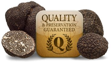 QUALITY AND CONSERVATION GUARANTEED